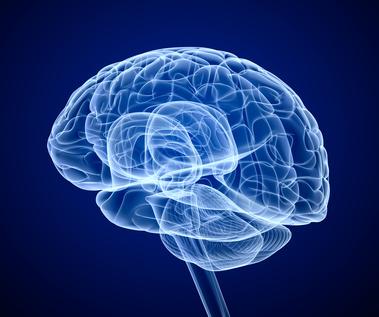 symbolisierte Röntgenaufnahme eines Gehirns
