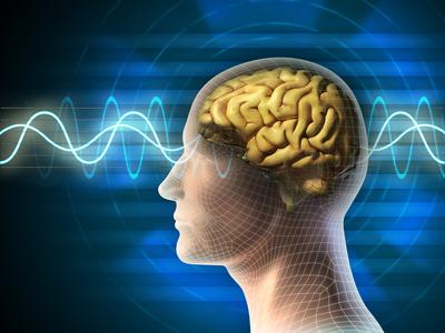 Symboldarstellung von Gehirn und Gehirnwellenverlauf