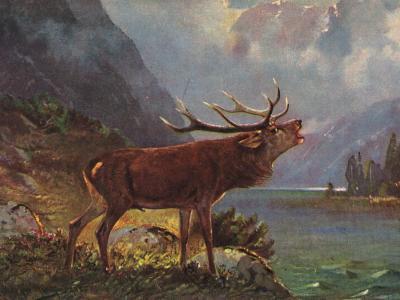 Gemälde röhrender Hirsch