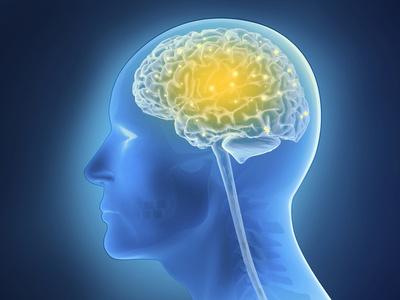 Animation eines menschlichen Kopfes mit symbolhafter Darstellung des Gehirns